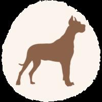 Hundemarke_Größe_L