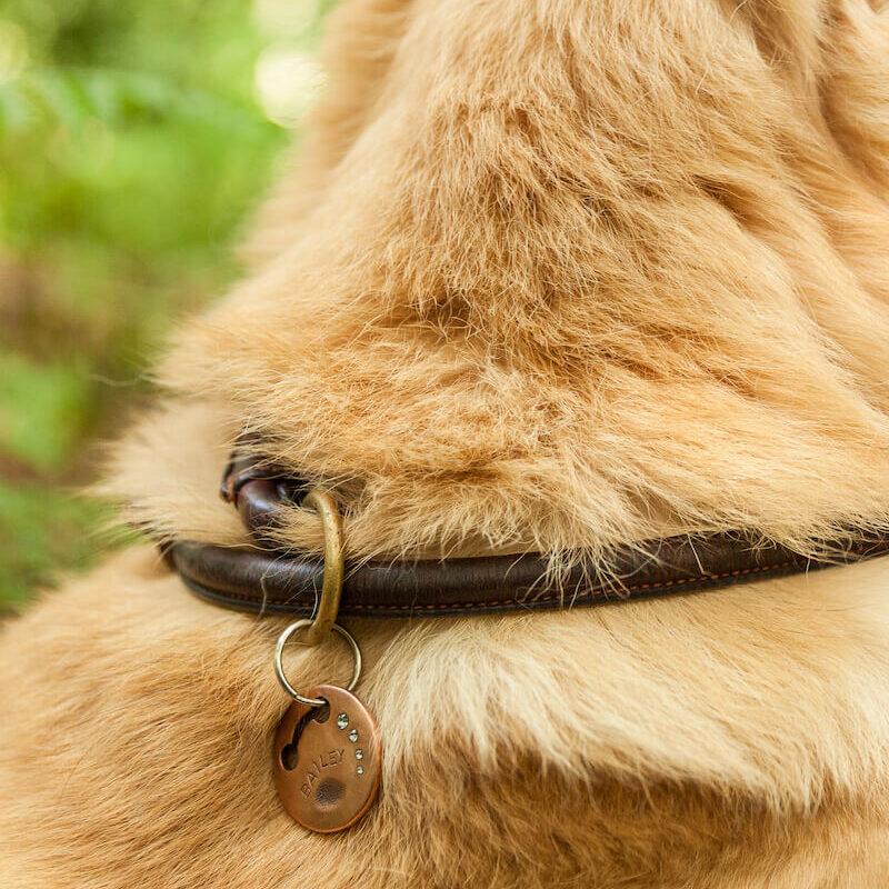 Sams_Hundemarkenmanufaktur_Hundemarke_Halsband